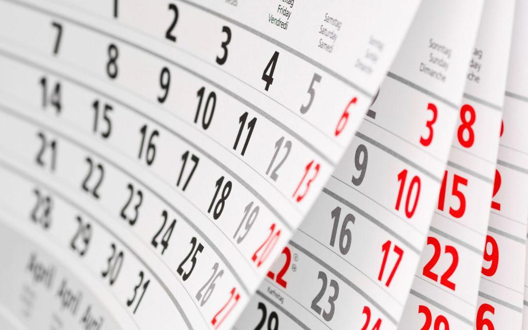 Oferta kalendarzu PUIG