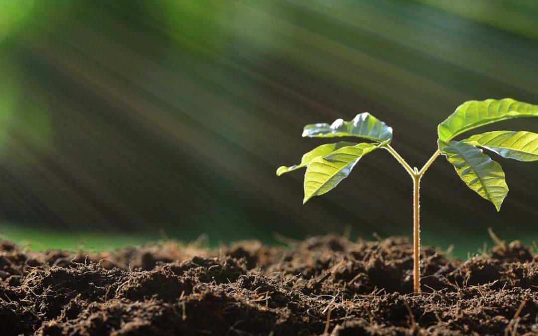Spadek inwestycji w rolnictwie